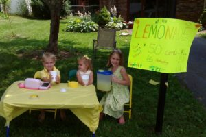 Lemonade Stand photo